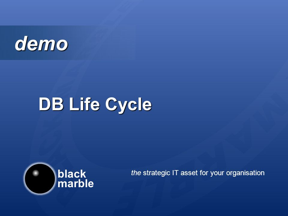 black marble the strategic IT asset for your organisation demo demo DB Life Cycle