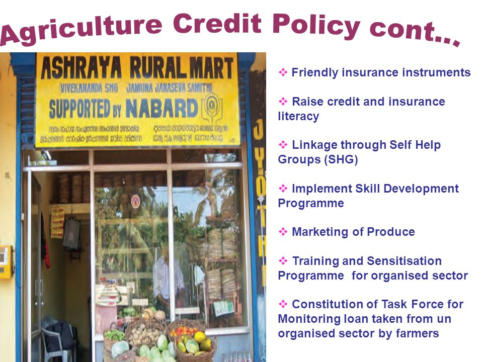 Friendly insurance instruments Raise credit and insurance literacy Linkage through Self Help Groups (SHG) Implement Skill Development Programme Marketing of Produce Training and Sensitisation Programme for organised sector Constitution of Task Force for Monitoring loan taken from un organised sector by farmers