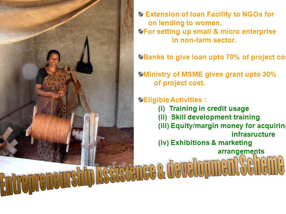 Extension of loan Facility to NGOs for on lending to women.