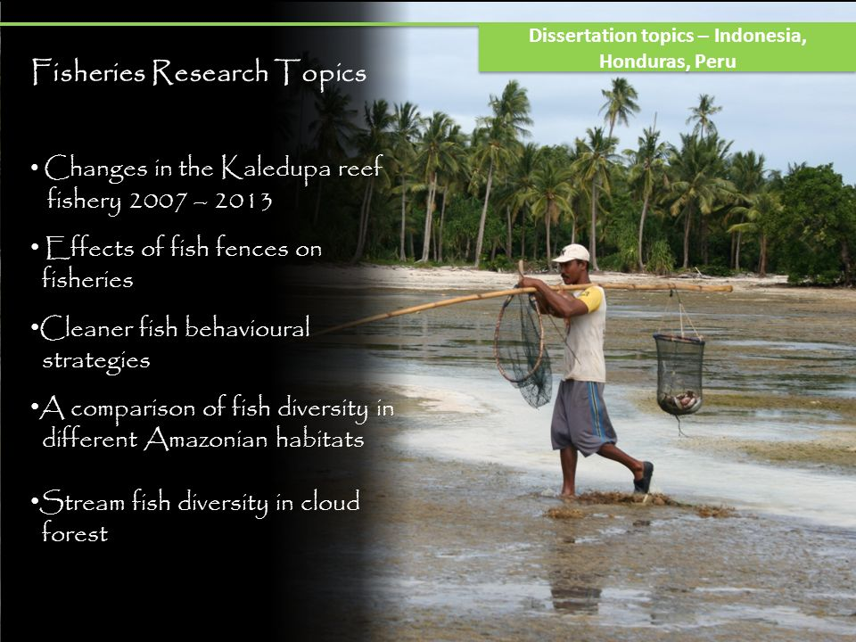 Fisheries Research Topics Changes in the Kaledupa reef fishery 2007 – 2013 Effects of fish fences on fisheries Cleaner fish behavioural strategies A comparison of fish diversity in different Amazonian habitats Stream fish diversity in cloud forest Dissertation topics – Indonesia, Honduras, Peru