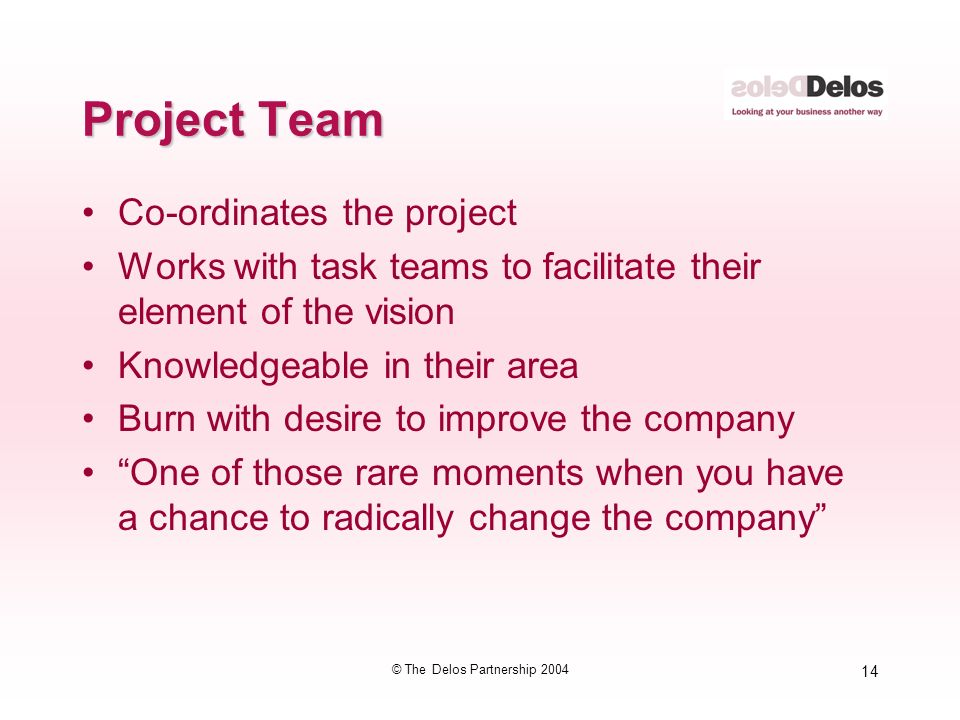 14 © The Delos Partnership 2004 Project Team Co-ordinates the project Works with task teams to facilitate their element of the vision Knowledgeable in their area Burn with desire to improve the company One of those rare moments when you have a chance to radically change the company