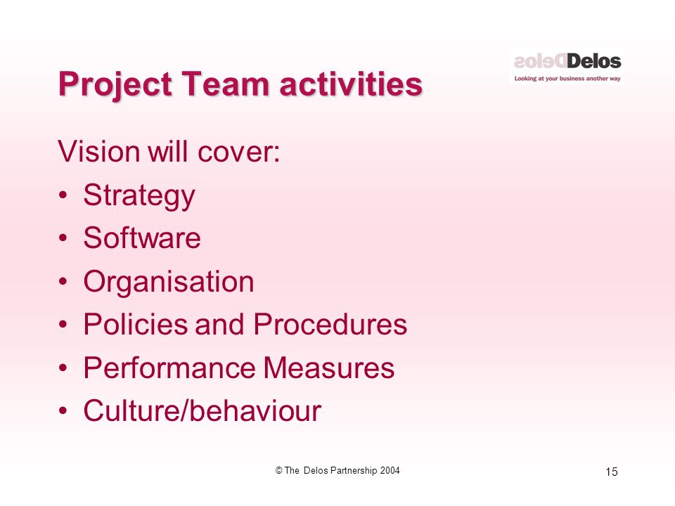 15 © The Delos Partnership 2004 Project Team activities Vision will cover: Strategy Software Organisation Policies and Procedures Performance Measures Culture/behaviour