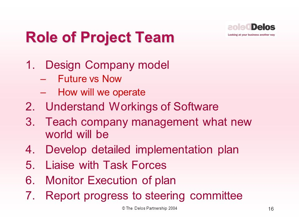 16 © The Delos Partnership 2004 Role of Project Team 1.Design Company model –Future vs Now –How will we operate 2.Understand Workings of Software 3.Teach company management what new world will be 4.Develop detailed implementation plan 5.Liaise with Task Forces 6.Monitor Execution of plan 7.Report progress to steering committee