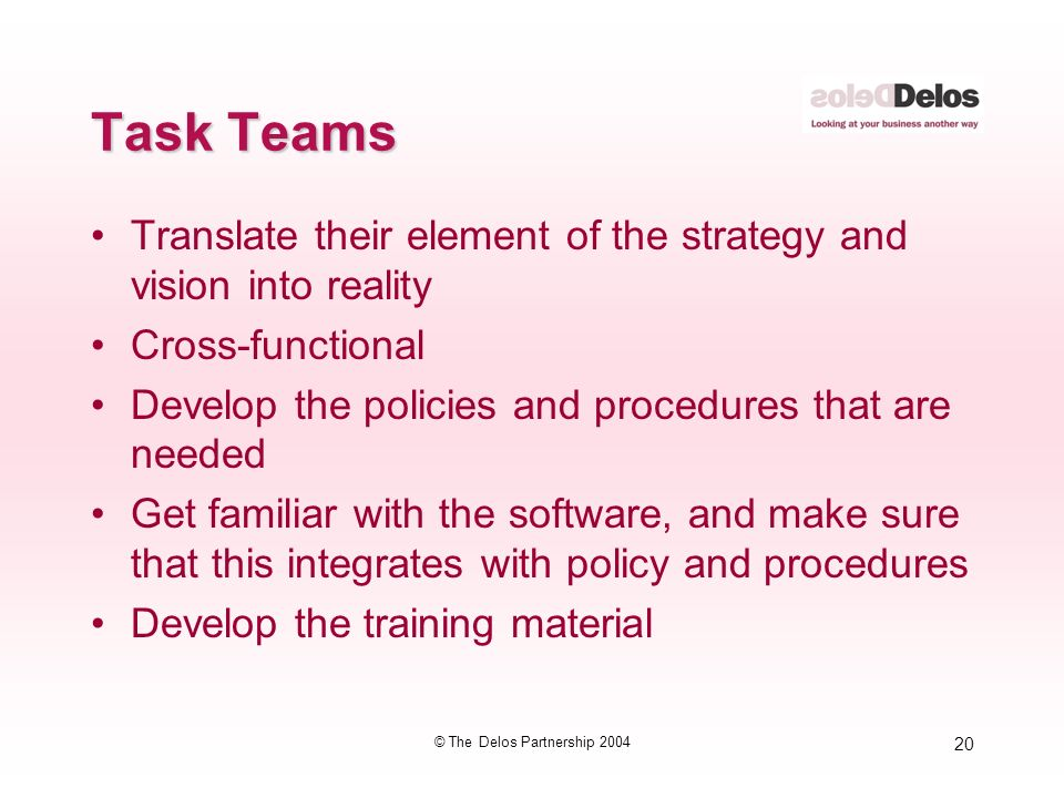 20 © The Delos Partnership 2004 Task Teams Translate their element of the strategy and vision into reality Cross-functional Develop the policies and procedures that are needed Get familiar with the software, and make sure that this integrates with policy and procedures Develop the training material