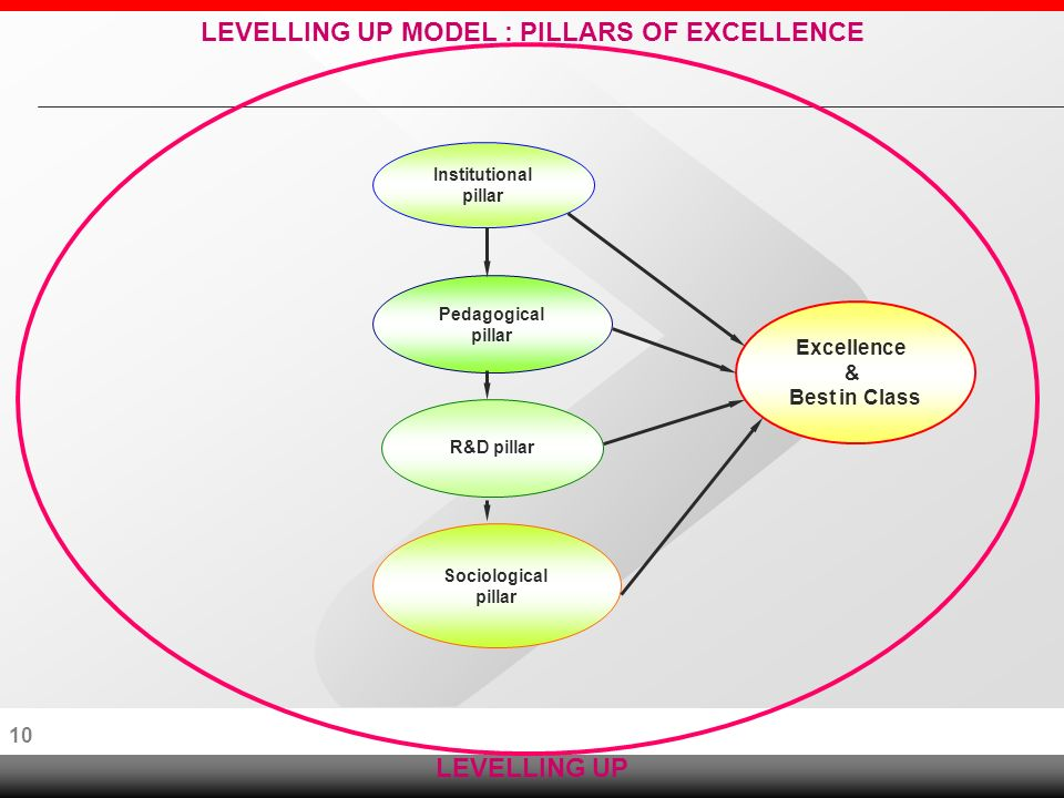 9 CONCEPTUAL FRAMEWORK LEVELLING UP Increasing participation and equity Enhancing Excellence