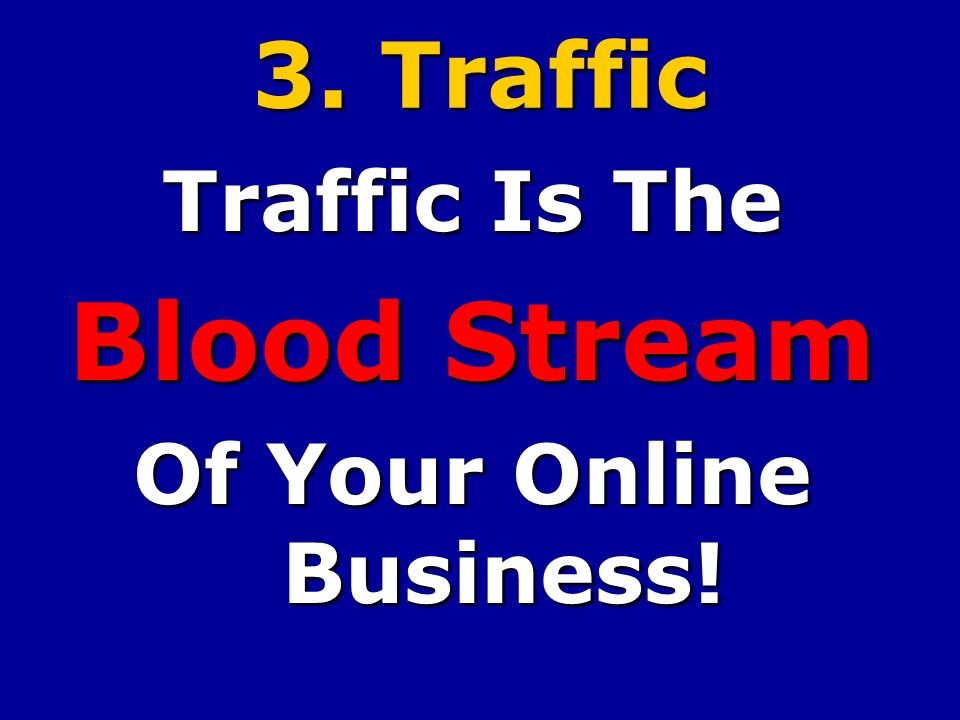3. Traffic Traffic Is The Blood Stream Of Your Online Business!