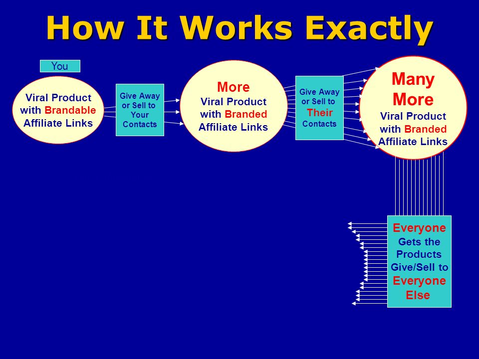 How It Works Exactly Viral Product with Brandable Affiliate Links You More Viral Product with Branded Affiliate Links Many More Viral Product with Branded Affiliate Links Give Away or Sell to Your Contacts Give Away or Sell to Their Contacts Everyone Gets the Products Give/Sell to Everyone Else Your Website