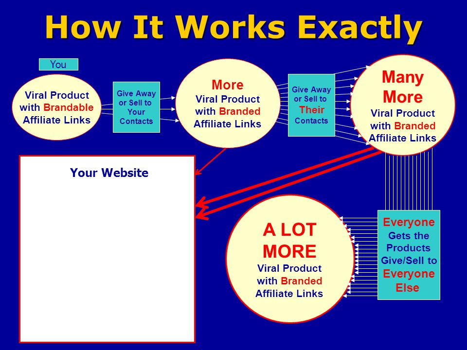 How It Works Exactly Viral Product with Brandable Affiliate Links You More Viral Product with Branded Affiliate Links Many More Viral Product with Branded Affiliate Links Give Away or Sell to Your Contacts Give Away or Sell to Their Contacts Everyone Gets the Products Give/Sell to Everyone Else A LOT MORE Viral Product with Branded Affiliate Links Your Website
