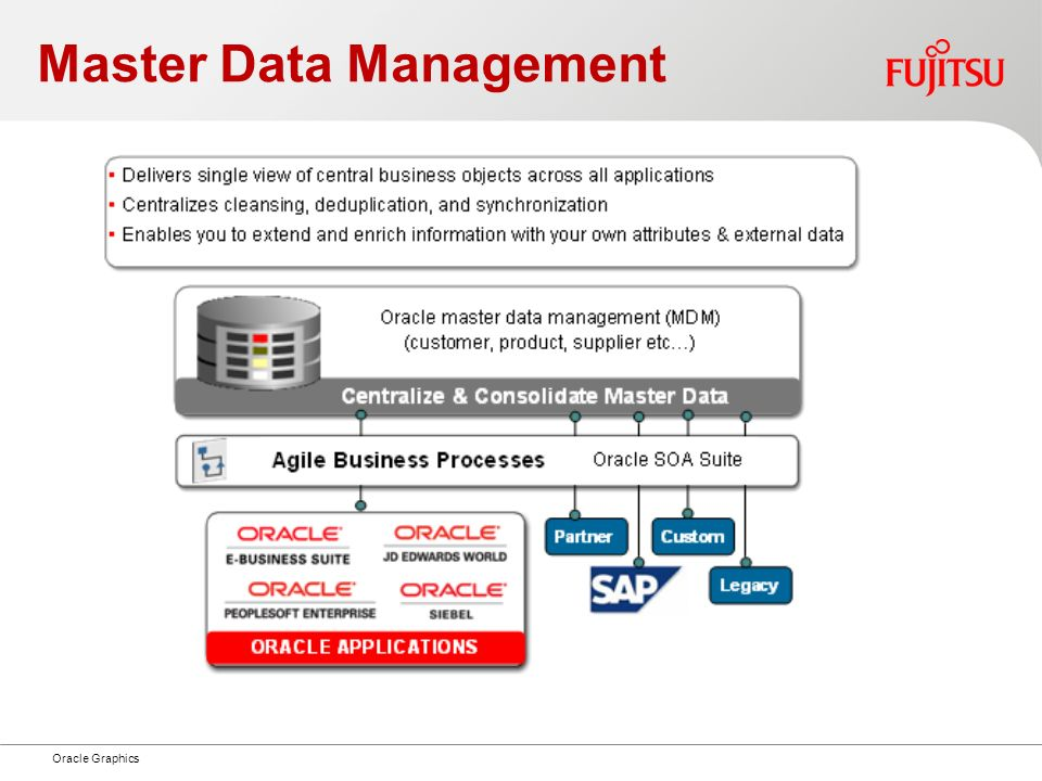 Master Data Management Oracle Graphics