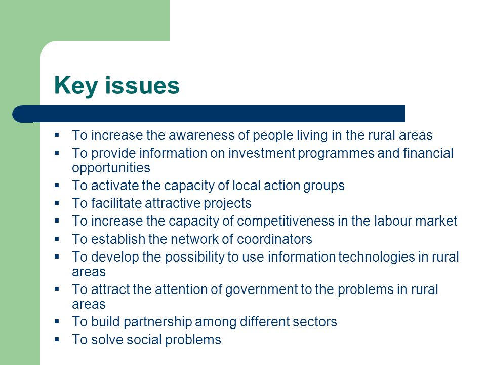 Key issues To increase the awareness of people living in the rural areas To provide information on investment programmes and financial opportunities To activate the capacity of local action groups To facilitate attractive projects To increase the capacity of competitiveness in the labour market To establish the network of coordinators To develop the possibility to use information technologies in rural areas To attract the attention of government to the problems in rural areas To build partnership among different sectors To solve social problems