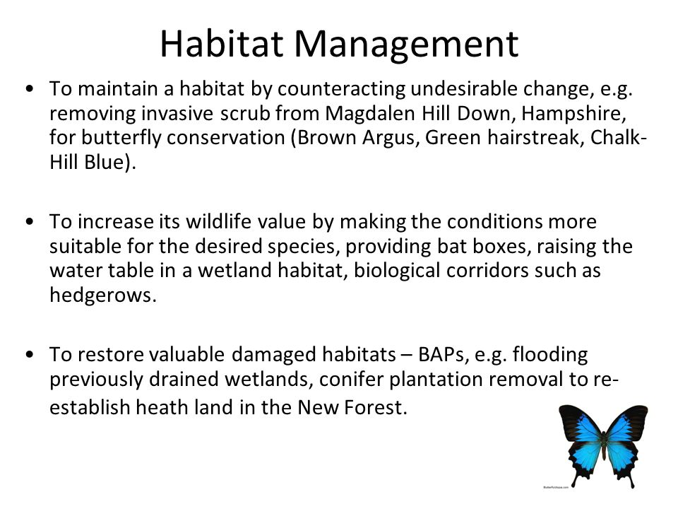 Habitat Management To maintain a habitat by counteracting undesirable change, e.g.