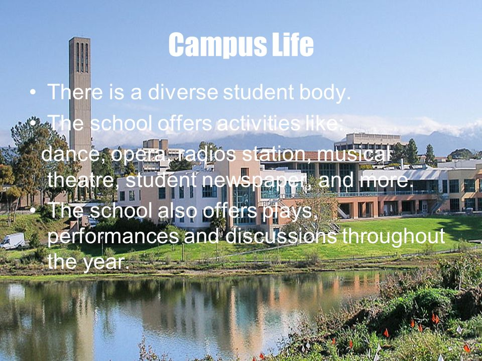 Campus Life There is a diverse student body.