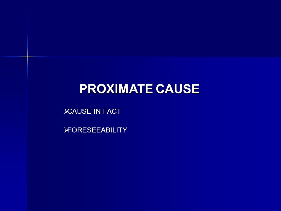 PROXIMATE CAUSE CAUSE-IN-FACT FORESEEABILITY