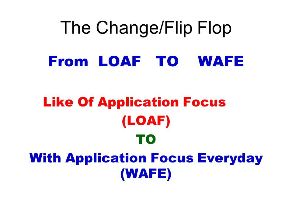 The Change/Flip Flop From LOAF TO WAFE Like Of Application Focus (LOAF) TO With Application Focus Everyday (WAFE)