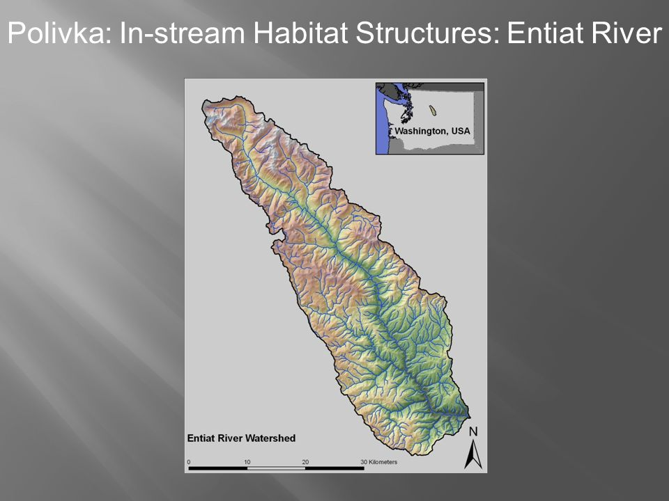 Polivka: In-stream Habitat Structures: Entiat River