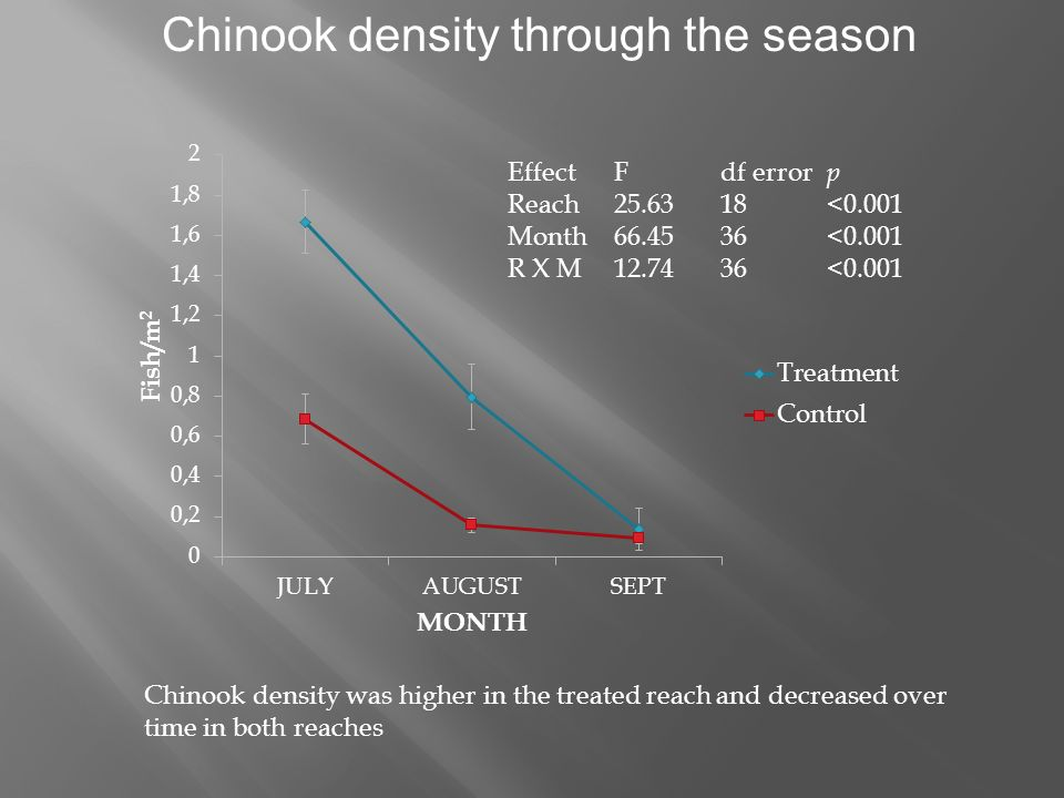 Chinook density through the season EffectFdf error p Reach <0.001 Month <0.001 R X M <0.001 Chinook density was higher in the treated reach and decreased over time in both reaches