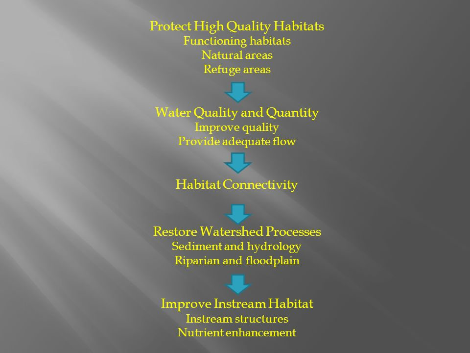Protect High Quality Habitats Functioning habitats Natural areas Refuge areas Water Quality and Quantity Improve quality Provide adequate flow Habitat Connectivity Restore Watershed Processes Sediment and hydrology Riparian and floodplain Improve Instream Habitat Instream structures Nutrient enhancement