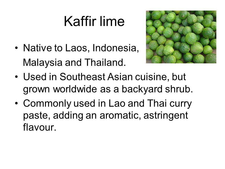 Kaffir lime Native to Laos, Indonesia, Malaysia and Thailand.