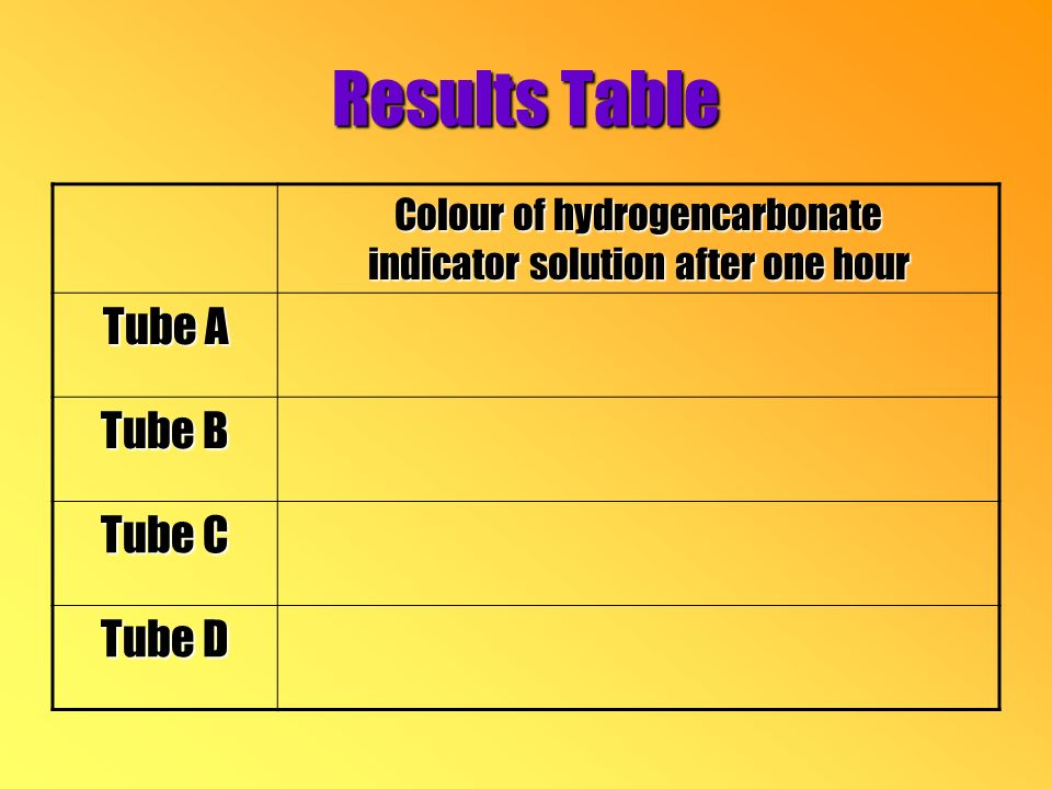 Results Table Colour of hydrogencarbonate indicator solution after one hour Tube A Tube B Tube C Tube D
