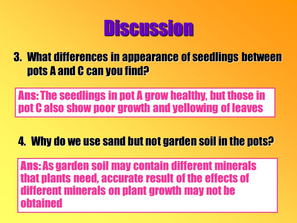 3.What differences in appearance of seedlings between pots A and C can you find.