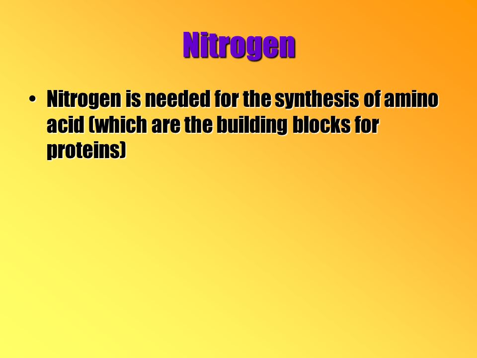 Nitrogen Nitrogen is needed for the synthesis of amino acid (which are the building blocks for proteins)Nitrogen is needed for the synthesis of amino acid (which are the building blocks for proteins)