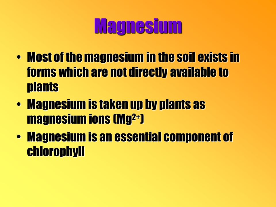 Magnesium Most of the magnesium in the soil exists in forms which are not directly available to plantsMost of the magnesium in the soil exists in forms which are not directly available to plants Magnesium is taken up by plants as magnesium ions (Mg 2+ )Magnesium is taken up by plants as magnesium ions (Mg 2+ ) Magnesium is an essential component of chlorophyllMagnesium is an essential component of chlorophyll