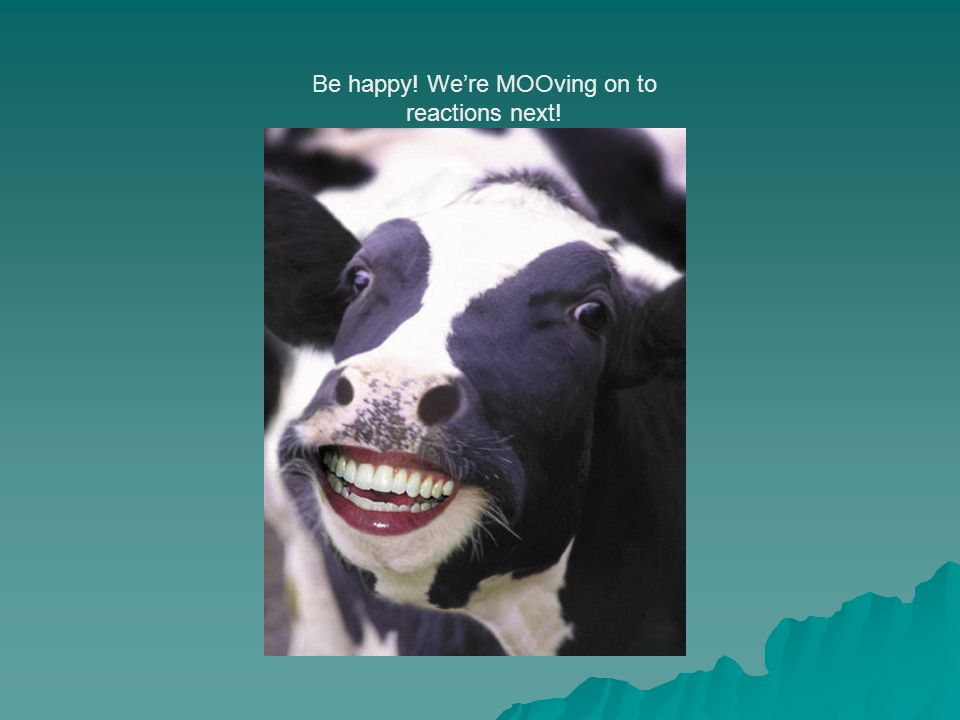 Be happy! Were MOOving on to reactions next!