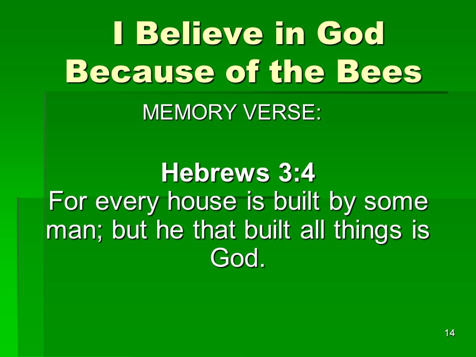 I Believe in God Because of the Bees I Believe in God Because of the Bees MEMORY VERSE: MEMORY VERSE: Hebrews 3:4 For every house is built by some man; but he that built all things is God.