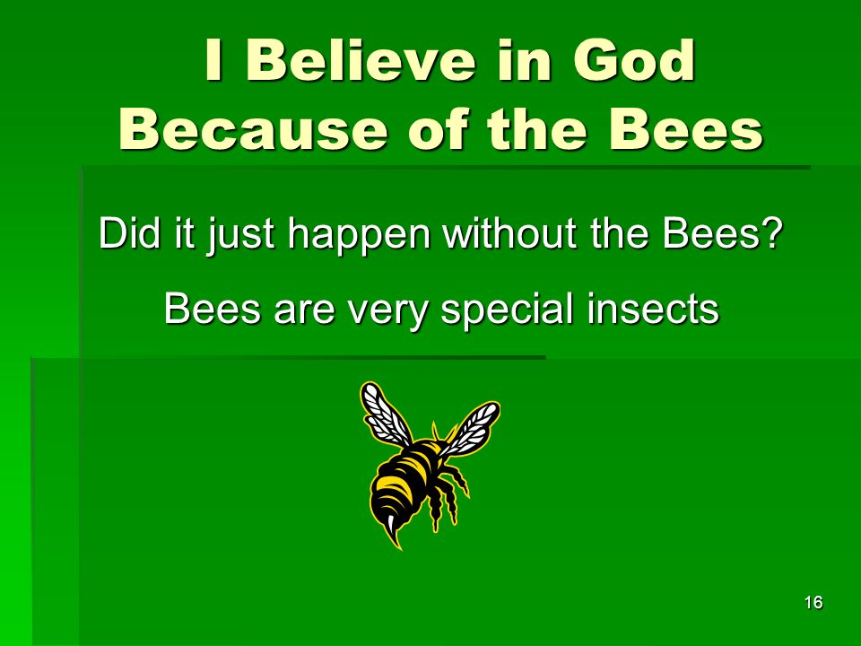 I Believe in God Because of the Bees I Believe in God Because of the Bees Did it just happen without the Bees.