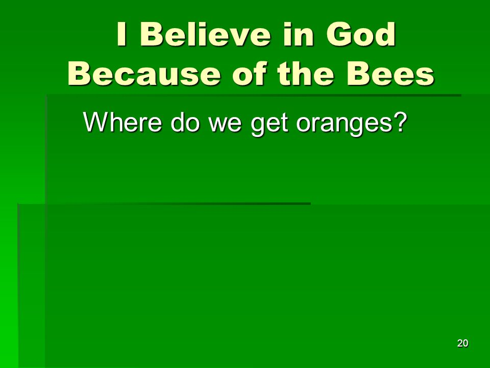 I Believe in God Because of the Bees I Believe in God Because of the Bees Where do we get oranges.