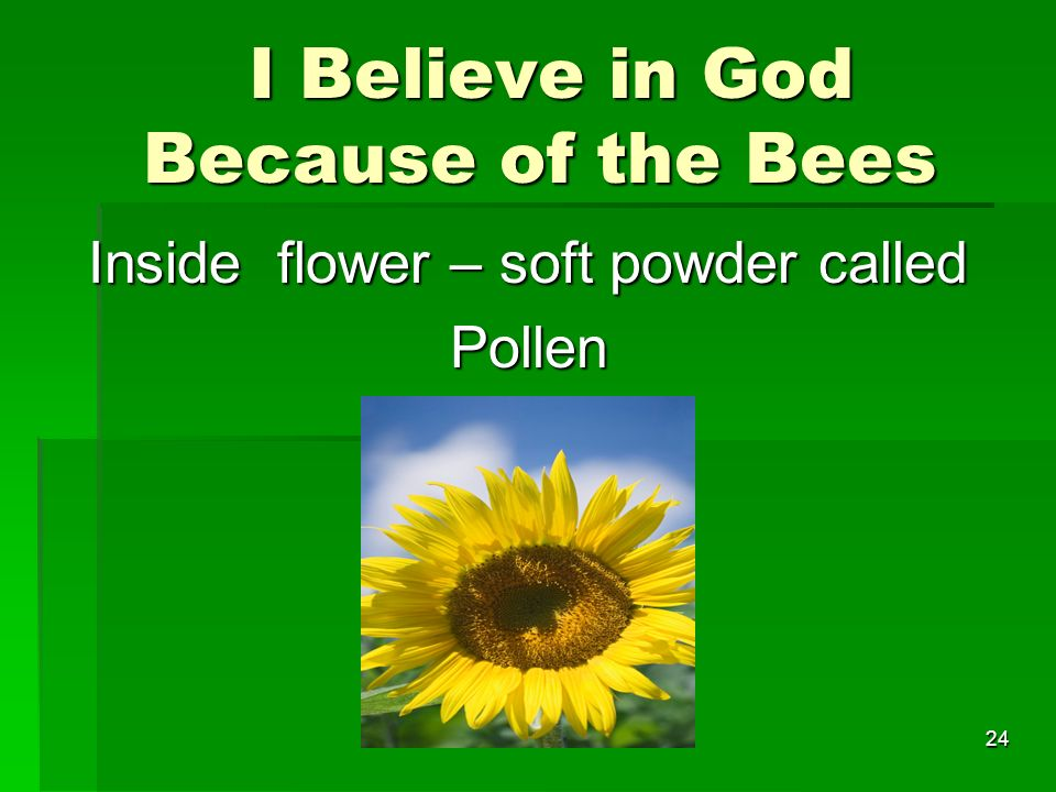 I Believe in God Because of the Bees I Believe in God Because of the Bees Inside flower – soft powder called Pollen 24