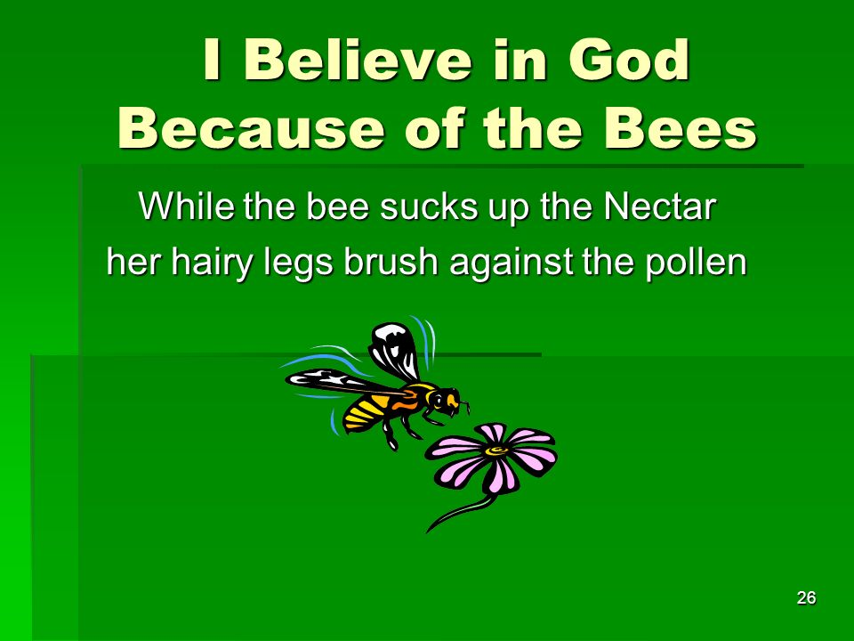 I Believe in God Because of the Bees I Believe in God Because of the Bees While the bee sucks up the Nectar her hairy legs brush against the pollen 26