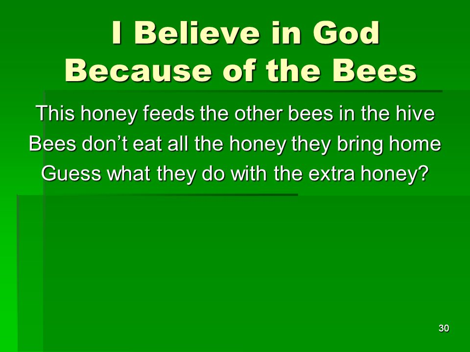 I Believe in God Because of the Bees I Believe in God Because of the Bees This honey feeds the other bees in the hive Bees dont eat all the honey they bring home Guess what they do with the extra honey.