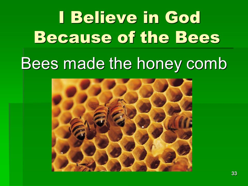 I Believe in God Because of the Bees I Believe in God Because of the Bees Bees made the honey comb 33