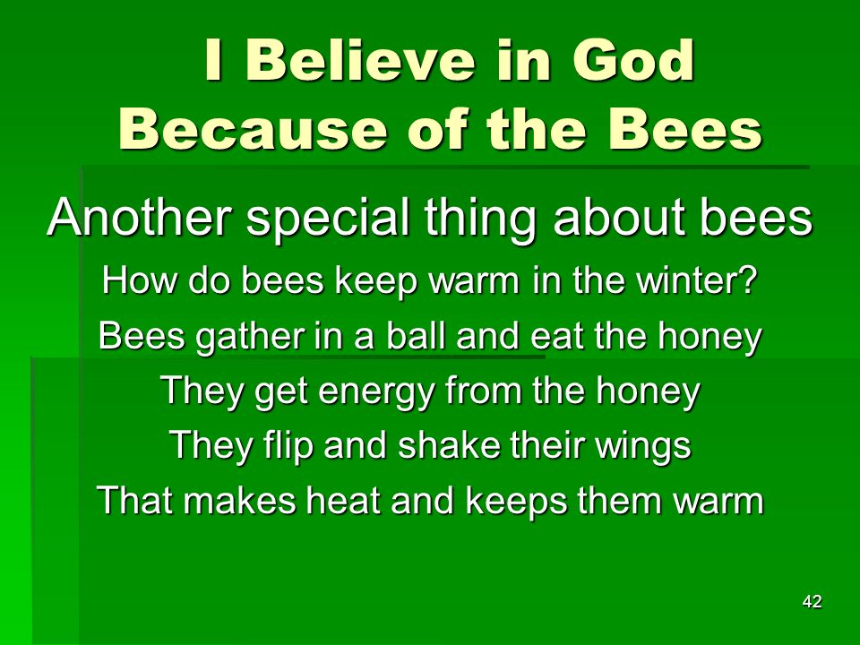 I Believe in God Because of the Bees I Believe in God Because of the Bees Another special thing about bees How do bees keep warm in the winter.