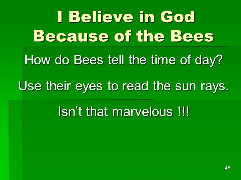 I Believe in God Because of the Bees I Believe in God Because of the Bees How do Bees tell the time of day.