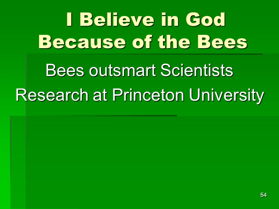 I Believe in God Because of the Bees I Believe in God Because of the Bees Bees outsmart Scientists Research at Princeton University 54