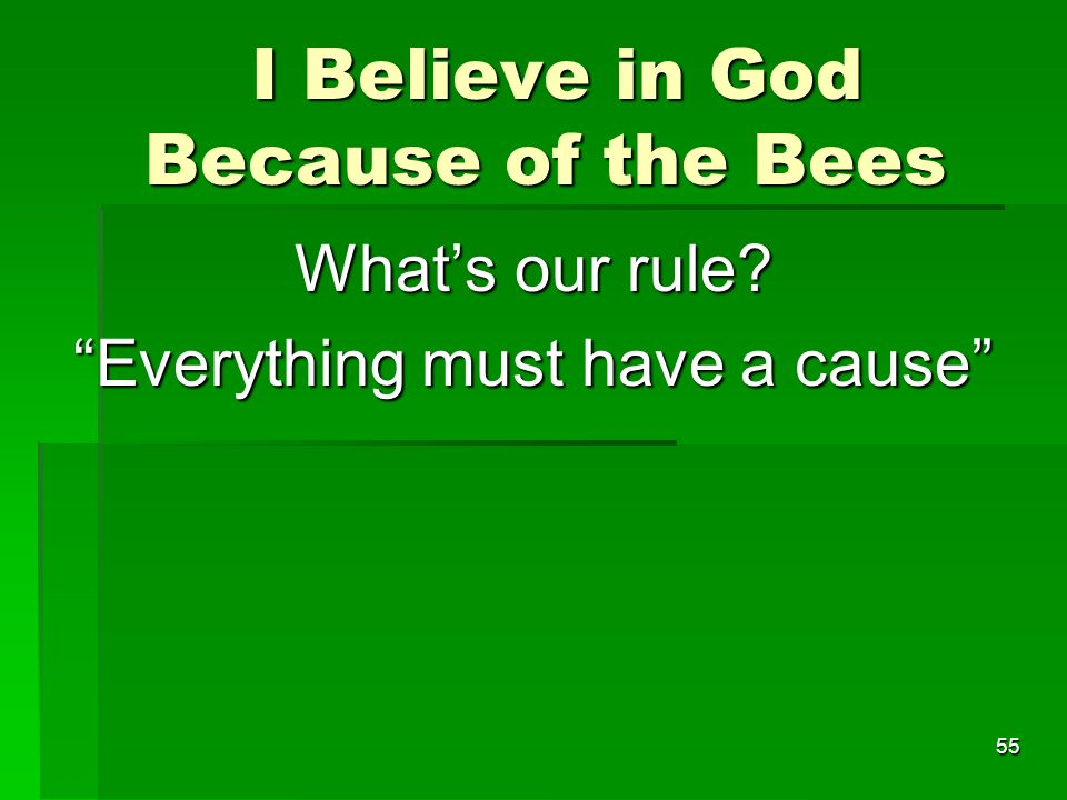 I Believe in God Because of the Bees I Believe in God Because of the Bees Whats our rule.