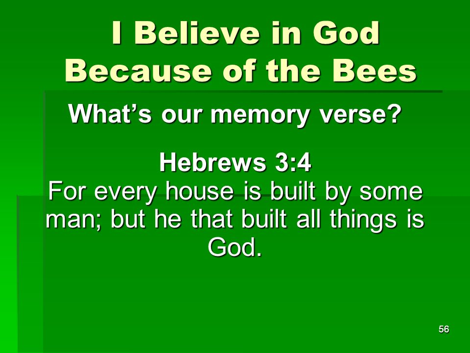 I Believe in God Because of the Bees I Believe in God Because of the Bees Whats our memory verse.