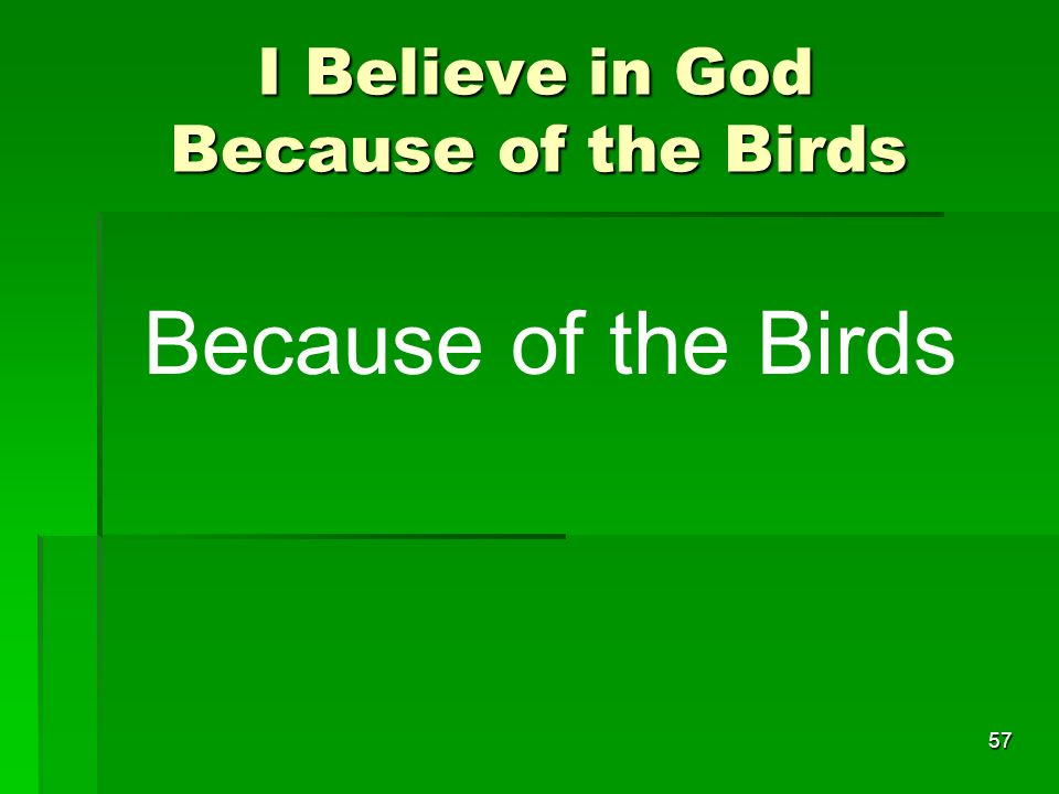 I Believe in God Because of the Birds I Believe in God Because of the Birds 57 Because of the Birds