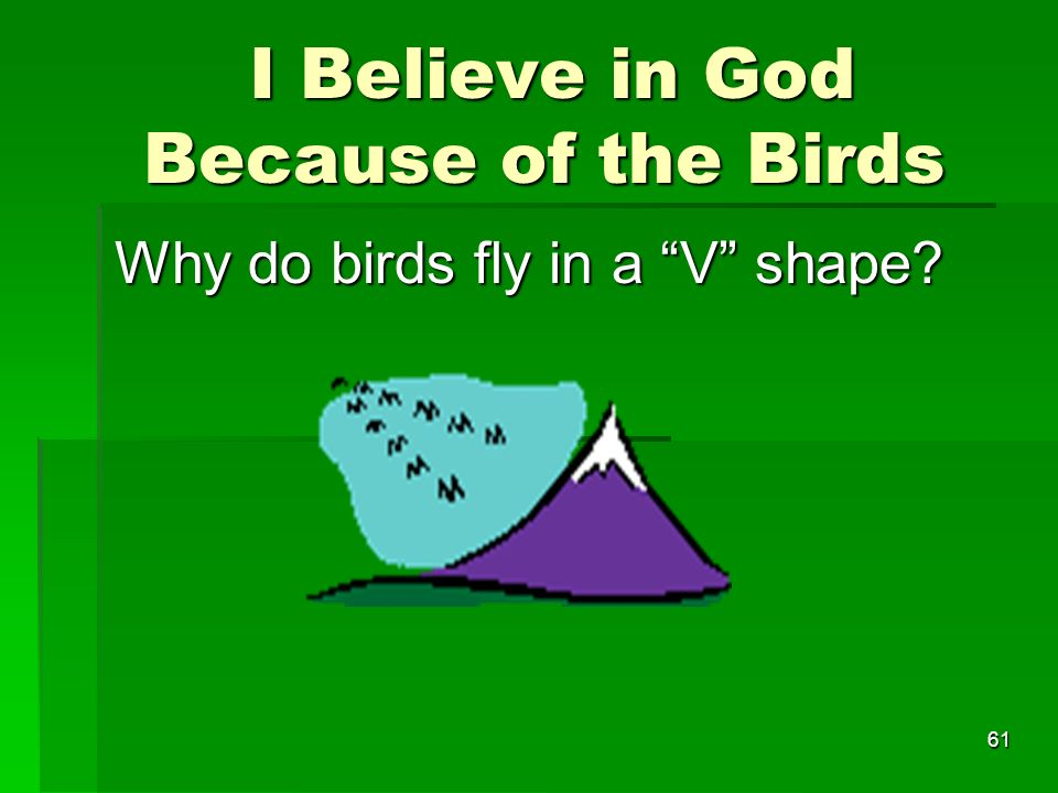 I Believe in God Because of the Birds I Believe in God Because of the Birds Why do birds fly in a V shape.