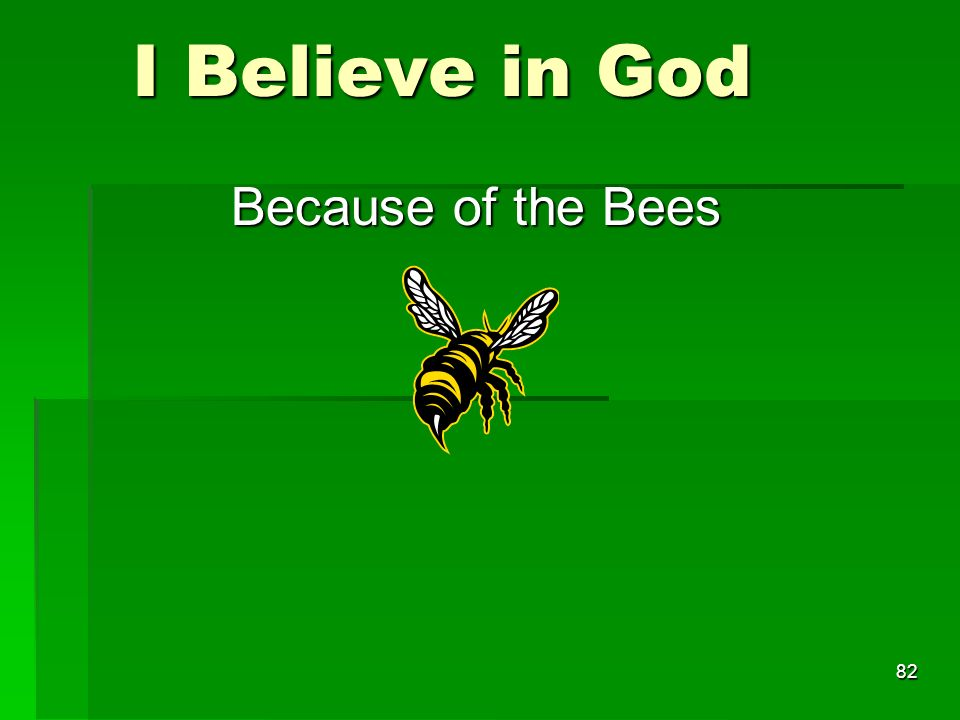 I Believe in God I Believe in God Because of the Bees 82