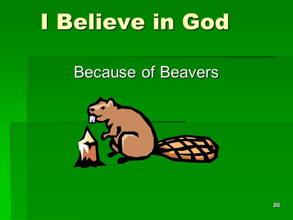 I Believe in God I Believe in God Because of Beavers 86