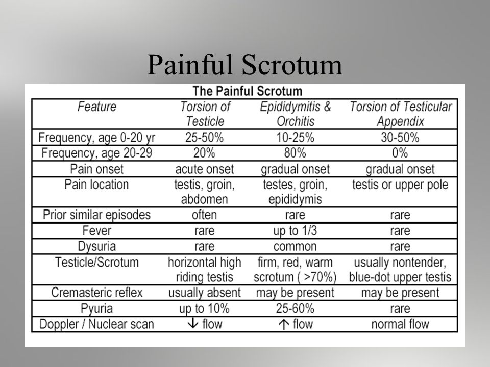 Painful Scrotum