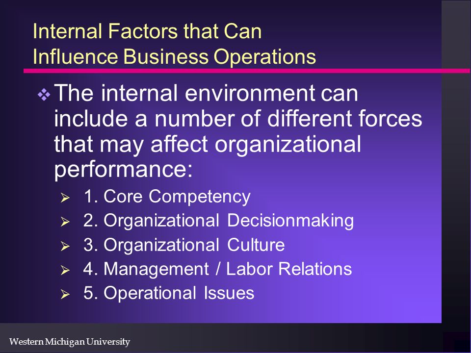 Western Michigan University Internal Factors that Can Influence Business Operations The internal environment can include a number of different forces that may affect organizational performance: 1.