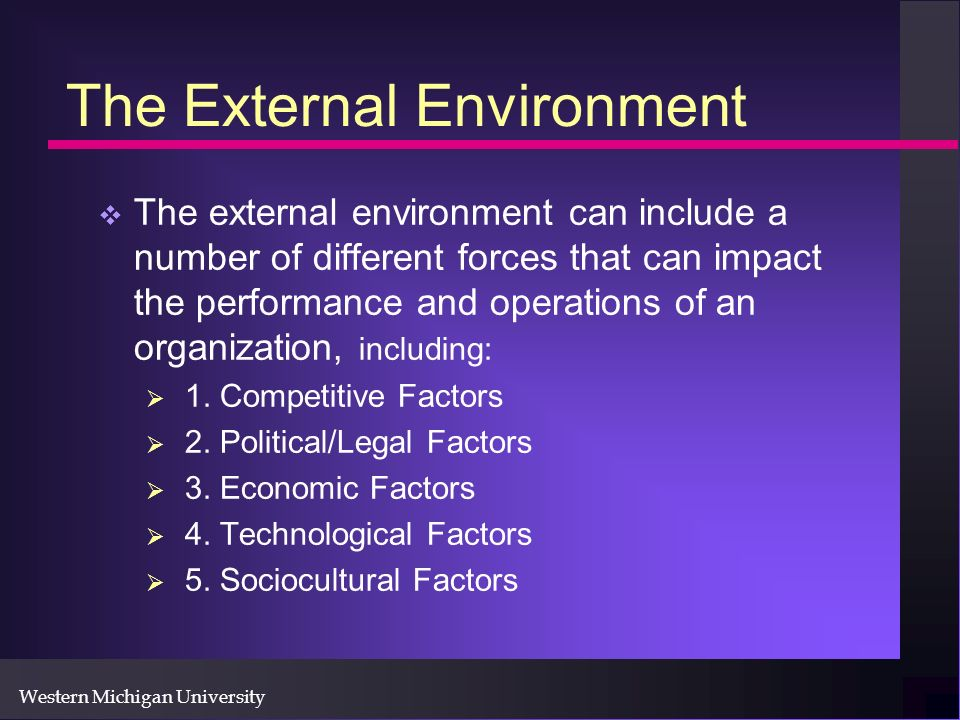 Western Michigan University The External Environment The external environment can include a number of different forces that can impact the performance and operations of an organization, including: 1.