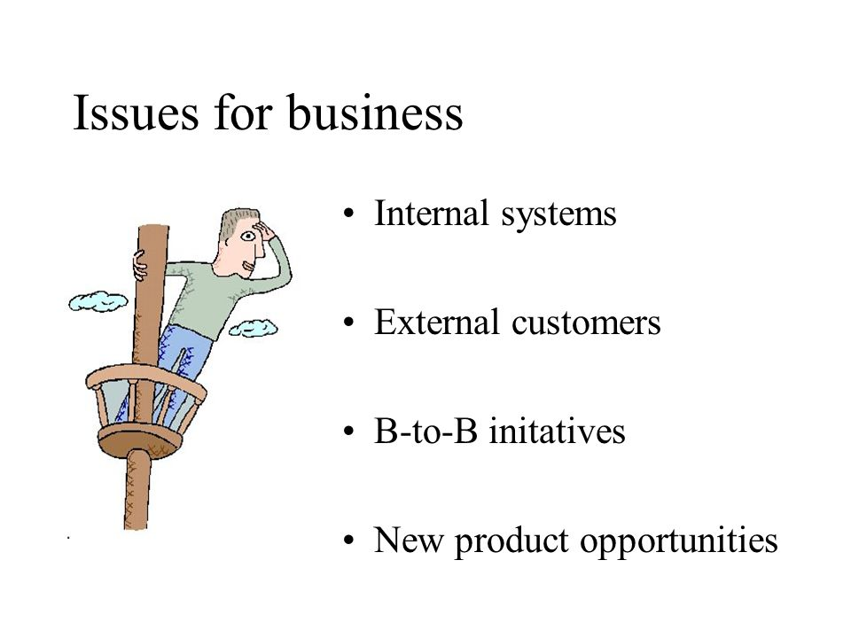 Issues for business Internal systems External customers B-to-B initatives New product opportunities
