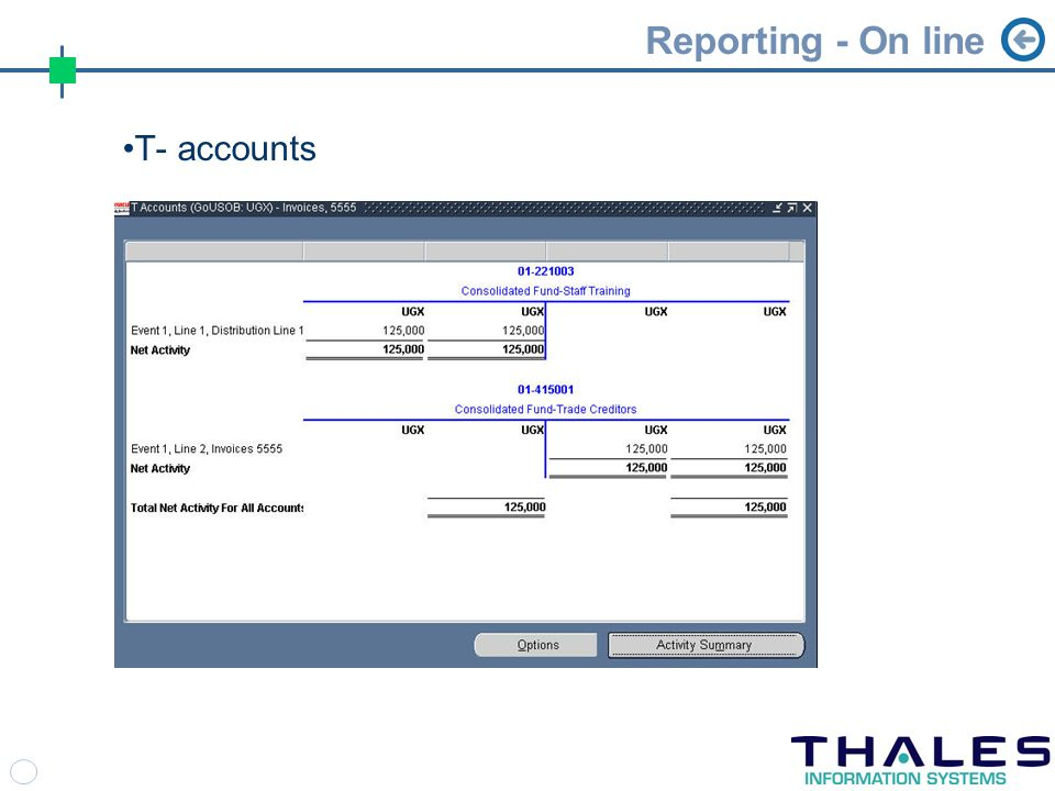 Reporting - On line T- accounts