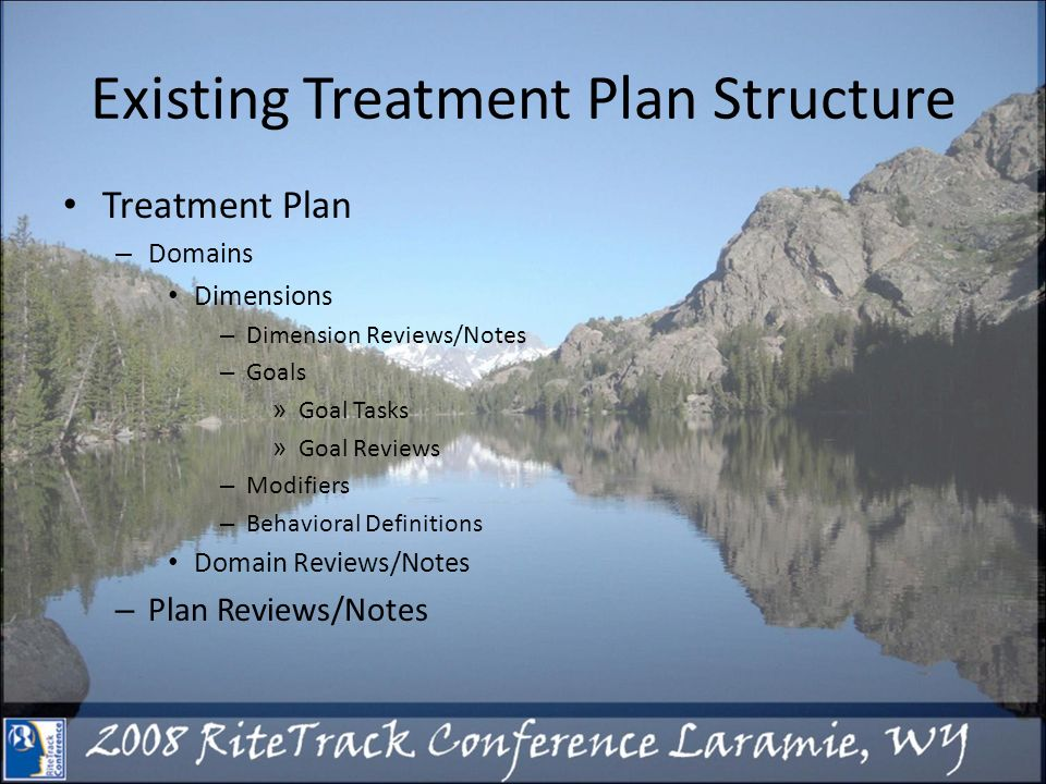 Existing Treatment Plan Structure Treatment Plan – Domains Dimensions – Dimension Reviews/Notes – Goals » Goal Tasks » Goal Reviews – Modifiers – Behavioral Definitions Domain Reviews/Notes – Plan Reviews/Notes