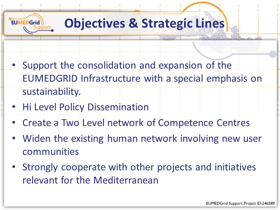 Objectives & Strategic Lines Support the consolidation and expansion of the EUMEDGRID Infrastructure with a special emphasis on sustainability.